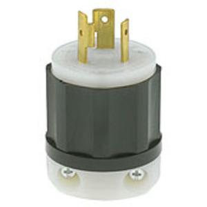 2321 20A 250V 2P3W BL LOCKING SG PLUG