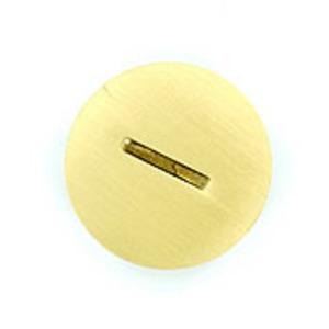 25249-CAP BRASS REPLACEM SCR CAP W/ O-R