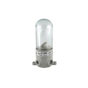 LVPE1501015 077493 150W W/ GLASS GLOBE