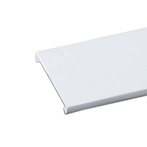 "Thomas & Betts TYD2CPW6 Wiring Duct Cover 2"" Wide x 6' Long, Rigid PVC, White."