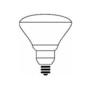 300BR/FL 300W INC LAMP 120V 143438