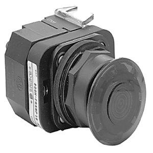 Allen-Bradley 800H-FRXMQ10RA7 30MM ILLUMINATED