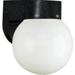 Progress Lighting P5813-31 Globe Light, Outdoor, 1-Light, 60W, Black