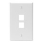410802WP 2 PORT WALLPLATE WHITE