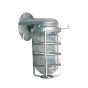 RAB VBR1 Jelly Jar, Outdoor, Incandescent, Vaporproof, 75W, Limited Quantities Available