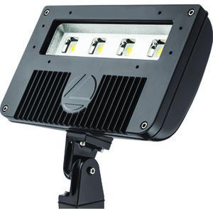 Lithonia Lighting DSXF2-LED-P2-50K-M2 D-SERIES SIZE 1 LED FLOD LUMINAIRE