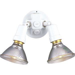 Progress Lighting P5207-30 Flood Light, Halogen, 2-Light, 150W, 120V, White