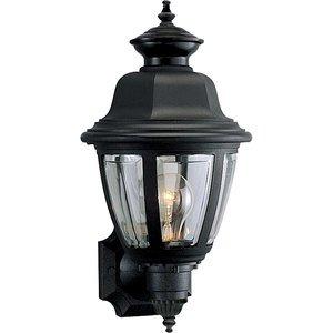 Progress Lighting P5737-31 Lantern, Outdoor, 1 Light, 60W, Black