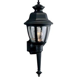Progress Lighting P5738-31 Wall Lantern, Outdoor, 1-Light, 60W, Black