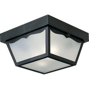 Progress Lighting P5745-31 Ceiling Light, Outdoor, 2-Light, 60W, Black
