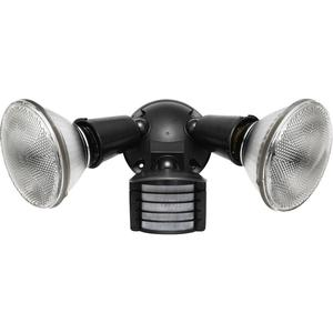 RAB LU300 Luminator Sensor/Light, 300W, Bronze