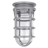 Red Dot Jelly Jar - Incandescent / CFL / HID