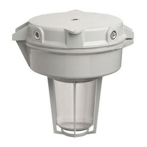 Rig-A-Lite SAF25HO4GGCPS Hazardous Location, 250W Metal Halide, 120-277V