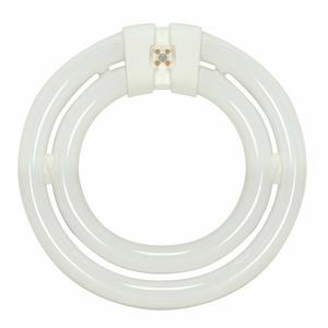 Satco S6596 SATCO S6596 2CT6 55W LAMP