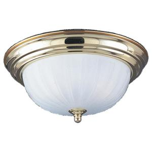 Sea Gull 7504-02 Close To Ceiling One Light Pol