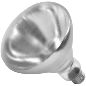 Shat-R-Shield 01697W Incandescent Lamp, Shatter-Resistant, R40, 250W, 120V, Clear