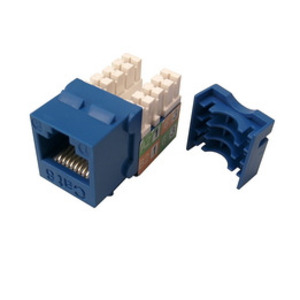 Shaxon BM703U810 Keystone Jack, CAT6, RJ45 to 110, Blue