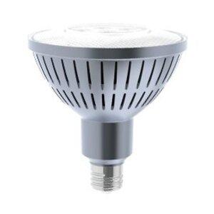 Solais LR38/25/30/1000 LED Lamp, PAR38, 18W, 120V, FL25