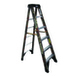 Werner Ladder 6206X9190