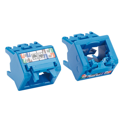 Cat6a Up/Down 45 Degree TG Wirecap, Blue