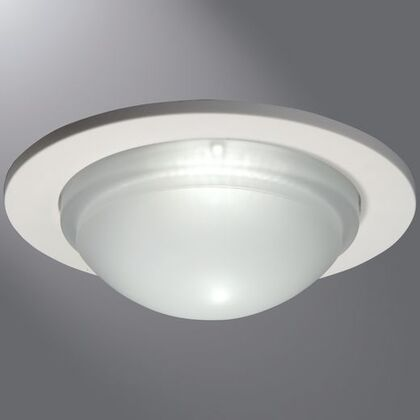 "5"" Showerlight, Satin Nickel"