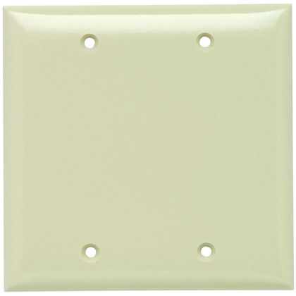 PLATE PLASTIC 2G BLANK W/OUT LINE I