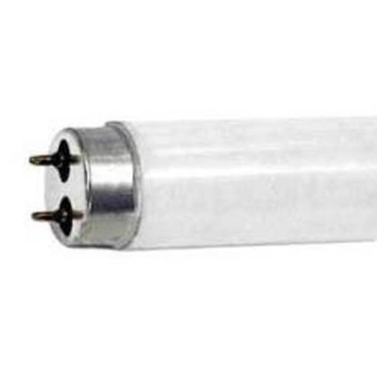 "Fluorescent Lamp, T8, 48"", 32W, 4100K"