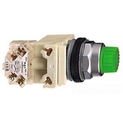 Push Button, Illuminated, 30mm, Green Cap, 120VAC Module, No Guard