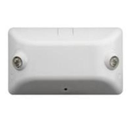 Emergency Light, LED, Dual Head, White, 4.8V, 2W