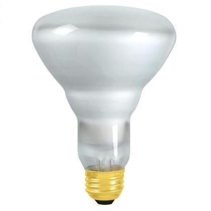 Incandescent TuffGuard Coated Reflector Lamp, BR30, 65W, 120V