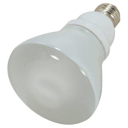 Compact Fluorescent Lamp, R30, 15W, 2700K